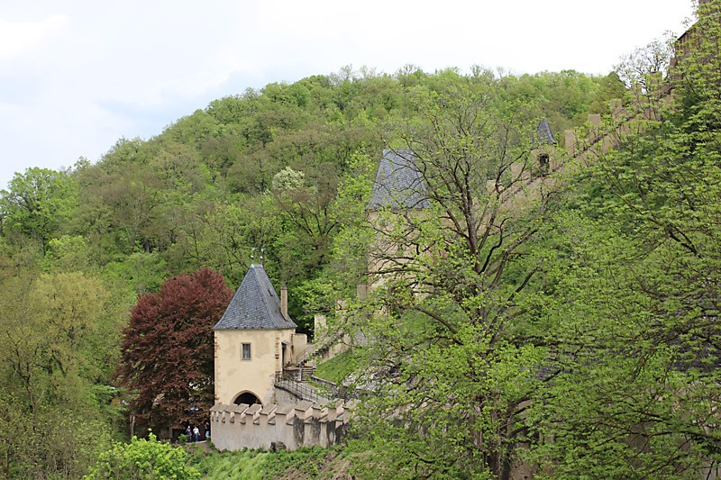 Omgivet av de grönskande, böhmiska skogarna ligger slottet. Foto: Nya Tider