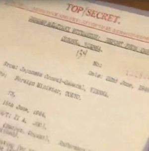 Stillbild: Rossija24